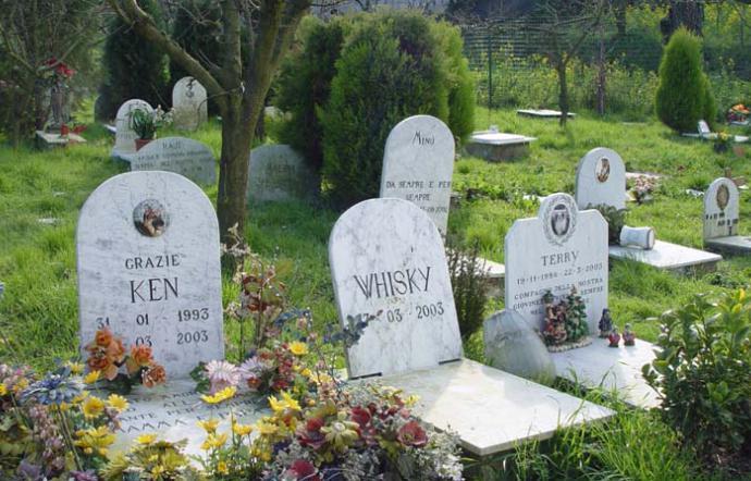 Cimiteri per gli amici a quattro zampe: la burocrazia blocca la Sicilia